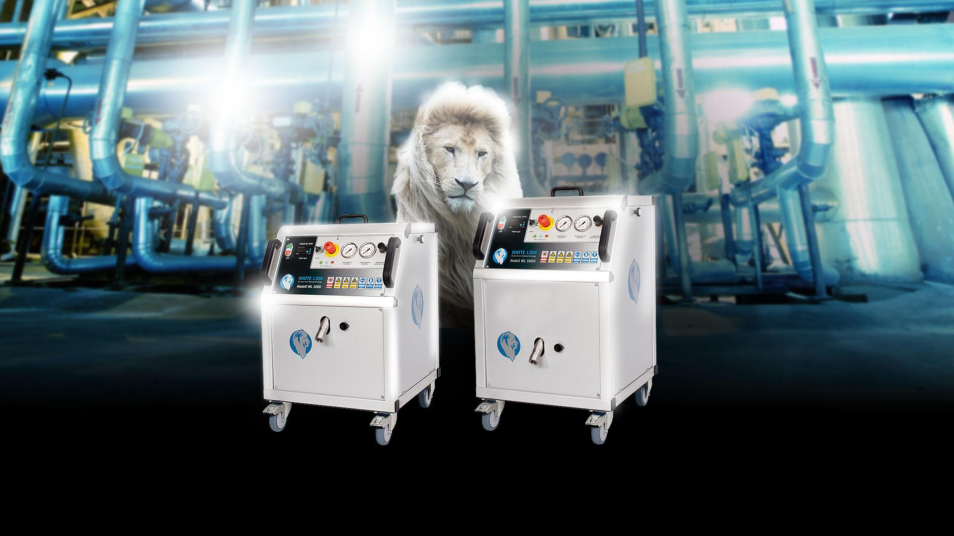 White Lion Blog
